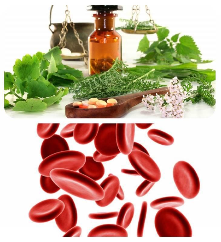 Лечение тромбоза народными средствами